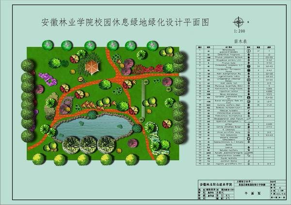 手绘灌木平面图例